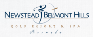 Newstead_Sm_Logo (Custom)